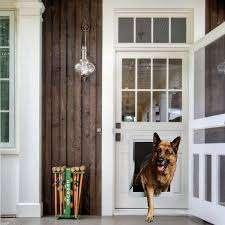 Ideal Plastic Pet Door