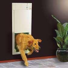 Pet Power High Tech Electronic
