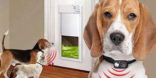high tech pet door review